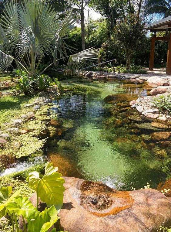 Zwemvijver in de achtertuin