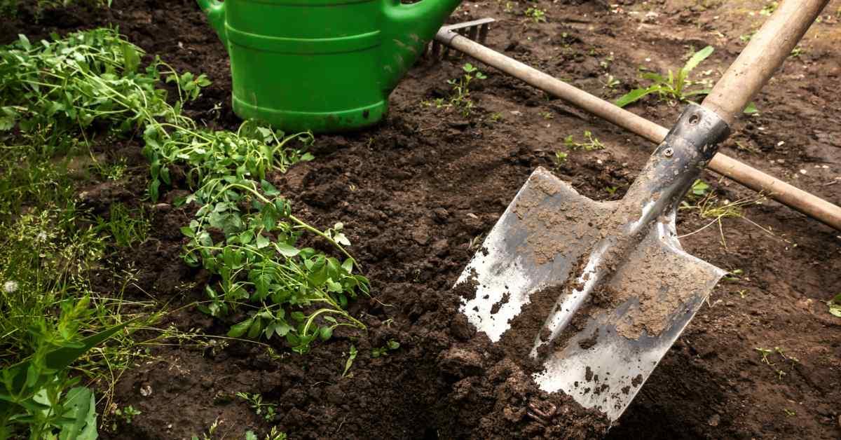 Gereedschap voor graszoden leggen