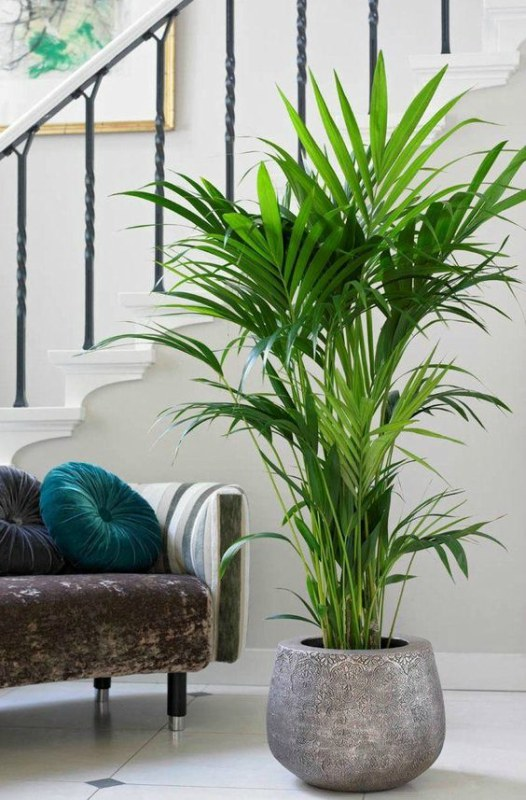 Grote Hoge Plantenpot.Grote Bloempot Voor Binnen 19 Bloempotten Buitenlevengevoel Nl