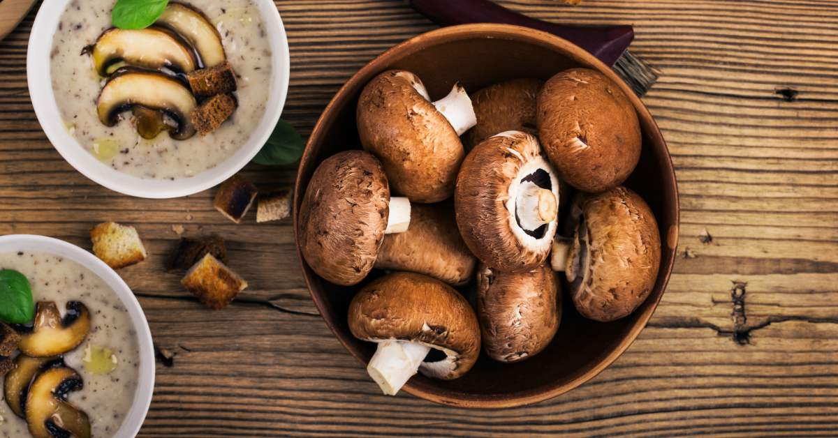 Koken met paddenstoelen
