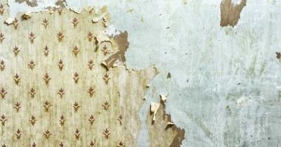 Behang van gipsplaten verwijderen