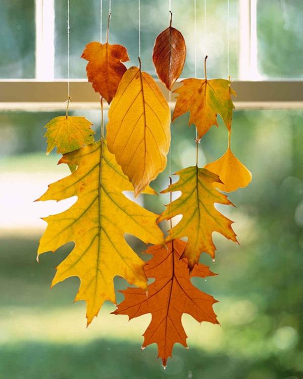 Hangende herfstbladeren