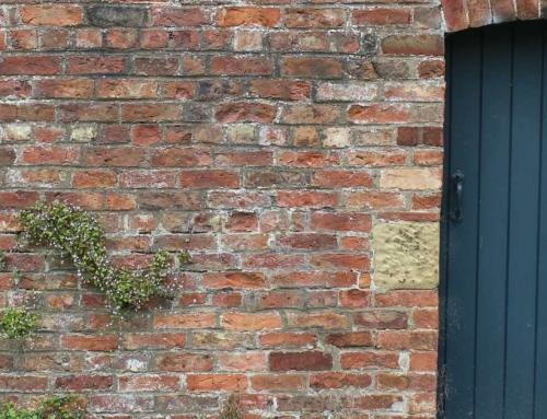 Lelijke tuinmuur camoufleren