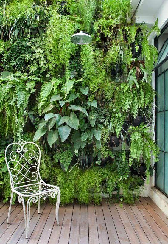 Verticale tuin tegen muur
