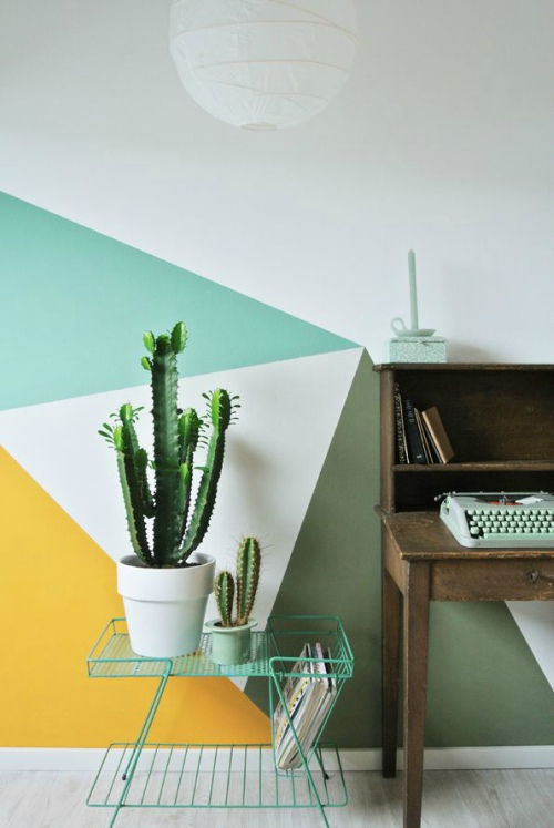 Cactus bij opvallende muur