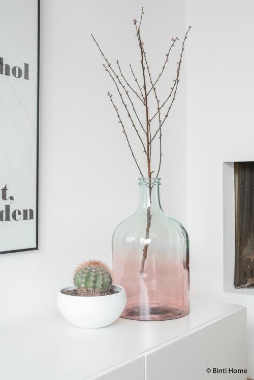 Cactussen en een roze vaas
