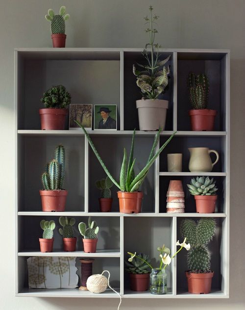 Letterbak met planten