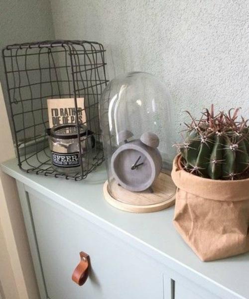 Moderne kamer met cactus