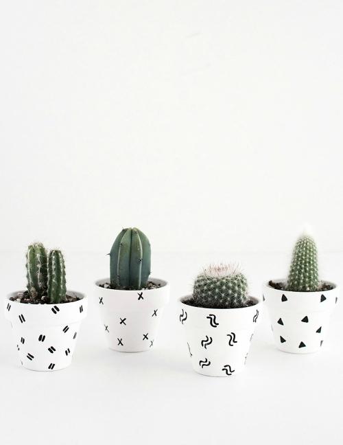 Witte potjes met zwarte figuren