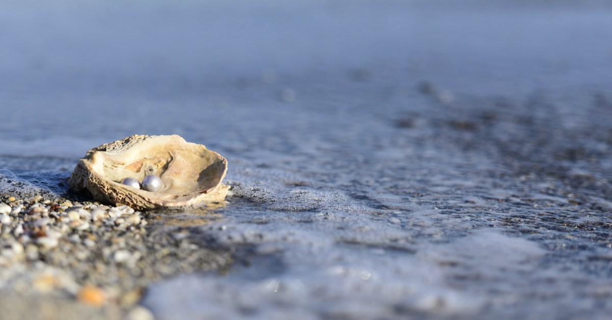 oester in de zee