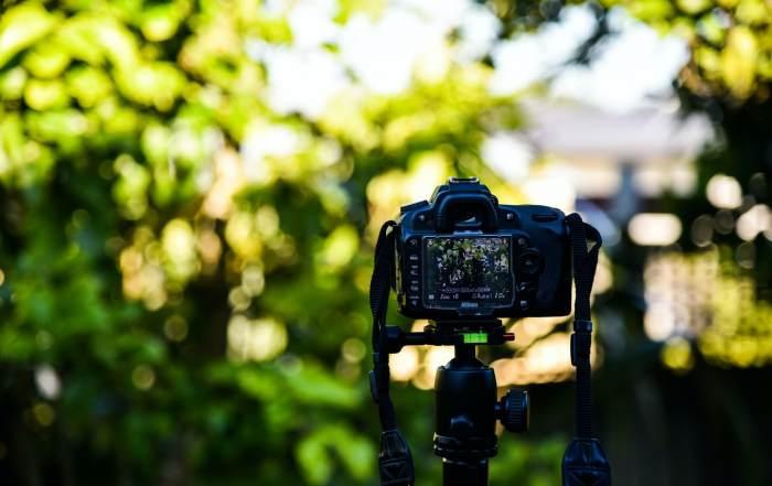 fotos in de tuin maken